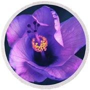 Opening Purple Hibiscus  Round Beach Towel