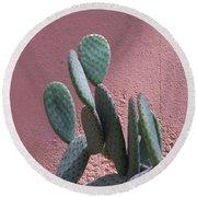 Opuntia Microdasys Round Beach Towel