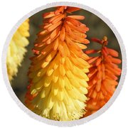 Orange And Gold Flower  Round Beach Towel