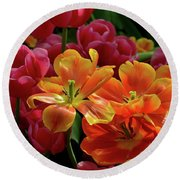 Orange And Red Tulip Lilies In Various Stages Of Bloom Round Beach Towel