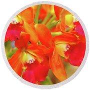 Orange Cattleya Orchid Round Beach Towel