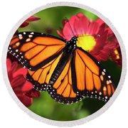 Orange Drift Monarch Butterfly Round Beach Towel