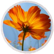 Orange Floral Summer Flower Art Print Daisy Type Blue Sky Baslee Troutman Round Beach Towel