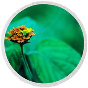 Orange Flower Iv Round Beach Towel