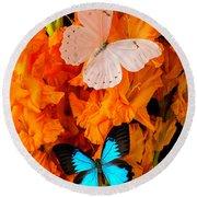 Orange Glads With Two Butterflies Round Beach Towel