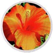 Orange Hibiscus Round Beach Towel