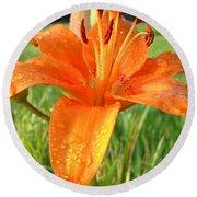 Orange Lily Dew Drop Round Beach Towel