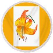 Orange Lily No 3 Round Beach Towel