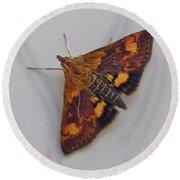 Orange Mint Moth - Pyrausta Orphisalis Round Beach Towel
