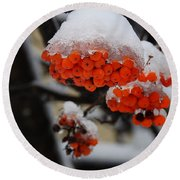 Orange Mountain Ash Berries Round Beach Towel