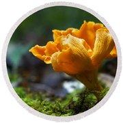 Orange Mushroom Flower On The Forest Floor Round Beach Towel