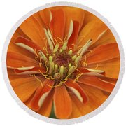 Orange Orange Orange Round Beach Towel