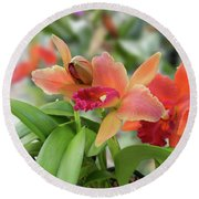 Orange Orchids 2 Round Beach Towel