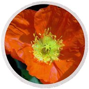 Orange Pop Photograph Round Beach Towel