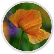 Orange Poppy Flower Round Beach Towel