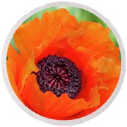 Orange Poppy Round Beach Towel