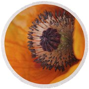Orange Poppy With Texture Round Beach Towel