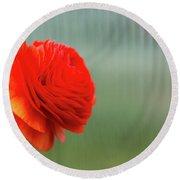 Orange Ranunculus Round Beach Towel