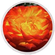 Orange Red Rose Flower Art Prints Giclee Baslee Troutman Round Beach Towel