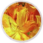 Orange Rhodies Flowers Art Rhododendron Baslee Troutman Round Beach Towel