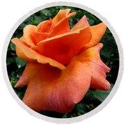 Orange Rose 1 Round Beach Towel