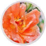 Orange Rose Raindrops Round Beach Towel