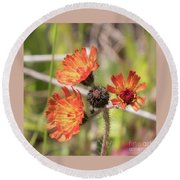 Orange Small Flowers With Buds Round Beach Towel