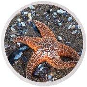 Orange Starfish Round Beach Towel