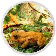 Orange Toad Round Beach Towel