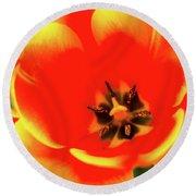 Orange Tulip Flowers In Spring Garden Round Beach Towel