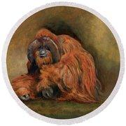 Orangutan Monkey Round Beach Towel