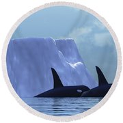 Orca Round Beach Towel by Corey Ford