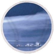 Orca Killer Whales Round Beach Towel