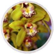 Orchid 11 Round Beach Towel