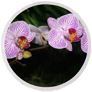 Orchid 2 Round Beach Towel