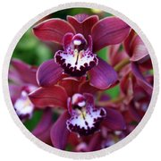 Orchid 20 Round Beach Towel