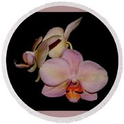 Orchid 2016 1 Round Beach Towel