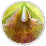 Orchid 21 Round Beach Towel