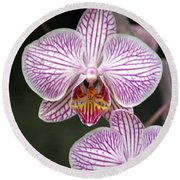 Orchid 22 Round Beach Towel