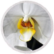 Orchid 23 Round Beach Towel