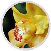 Orchid 24 Round Beach Towel