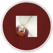 Orchid-3 Round Beach Towel