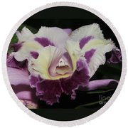 Orchid 87 Round Beach Towel