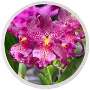 Orchid Aliceara Marfitch Round Beach Towel