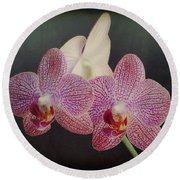 Orchid Beauty Round Beach Towel