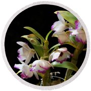 Orchid Blooms Round Beach Towel