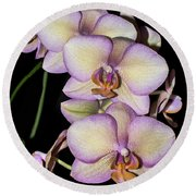 Orchid Blossoms I Round Beach Towel