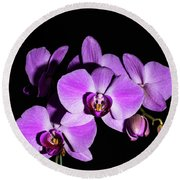 Orchid Blossoms IIi Round Beach Towel