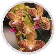 Orchid Chingruey's Goldstaff Round Beach Towel