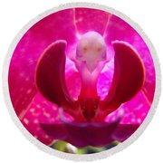 Orchid Genie Round Beach Towel